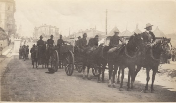 US Horse Transport troops, Vladivostok, 1918